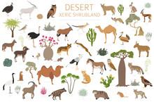 Desert Biome, Xeric Shrubland ...