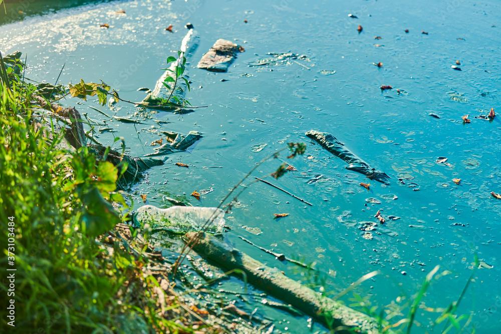 Fototapeta Environmental water pollution