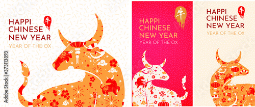 Fototapeta set Happy chinese new year 2021 Zodiac sign, year of the ox, background - template design for poster, banner, social media post. set of design design for instagram stories, suitable for postcards,   obraz