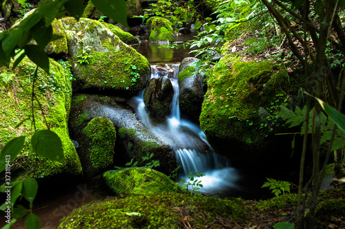 Valokuvatapetti Powerfull cascading waterflls flows down moss covered rocks and wild picturesque