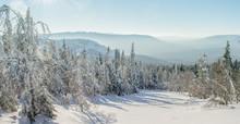 Panorama Of A Beautiful Winter...