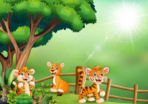Wild animal cartoon playing at jungle