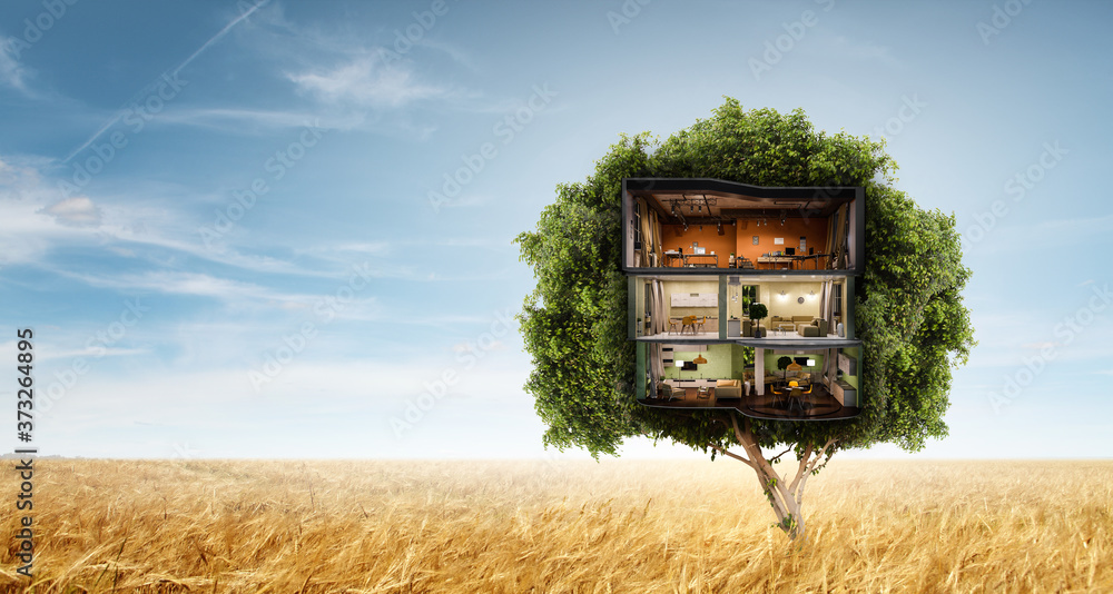Fototapeta Real estate and ecology concept