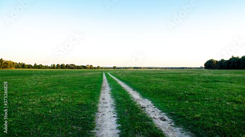 Fototapeta Super flat field far from human settlements
