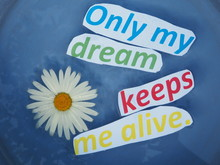 English Proverb. Expression. Only My Dream Keeps Me Alive.