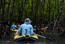 Canoeing To Mangrove Forest Sw...