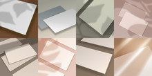Shadow Overlay. Business Cards, 3D Paper Sheets And Posters With Realistic Leaf And Window Shadows. Vector Image Mockup Set With Overlay Effect Blurred Leaves