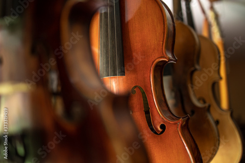 Fotografie, Obraz Close up view of violins music instrument.