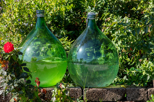 Fotografia Demijohn wine bottles at vineyard of the Prosecco sparkling wine region in Valdobbiadene, Italy