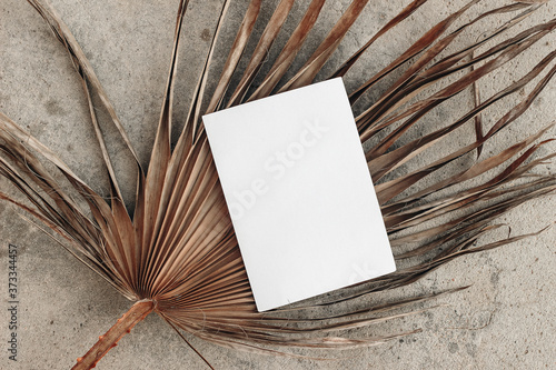 Summer wedding stationery still life. Blank greeting card mock-up scene on dry palm leaf. Grunge beige concrete textured background. Flat lay, top view. Tropical vacation concept. Boho design.