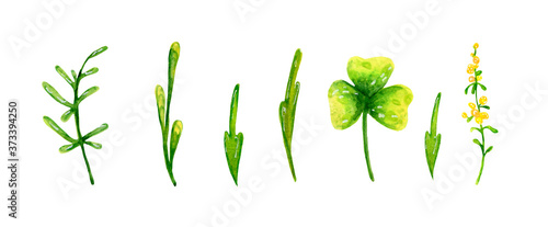 Leinwand Poster Abstract spring set, green twigs and leaves for festive decoration and design