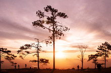 Beautiful Sunrise With Silhoue...