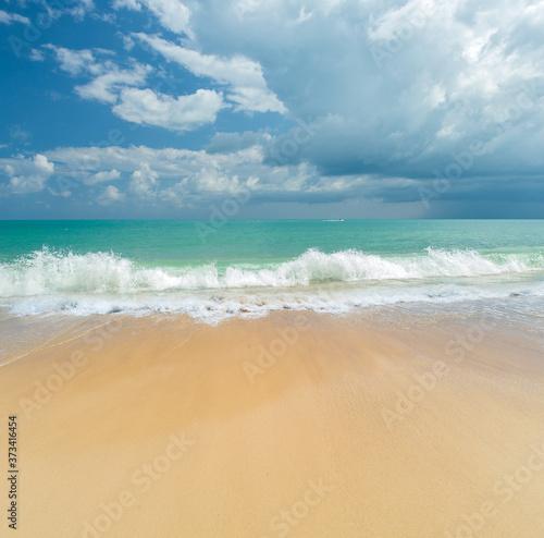 Tropical sandy beach landscape