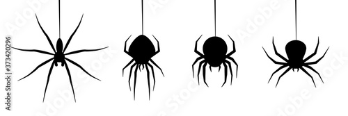 Canvastavla halloween spider's web vector