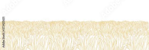 Fotografie, Obraz Dry field