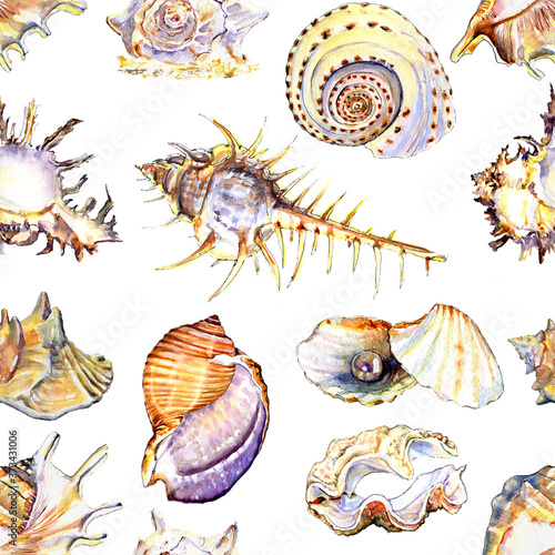 watercolor seamless pattern with shells realistic illustration Wallpaper Mural