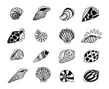 Seashells Sketch Icons. Sea Co...