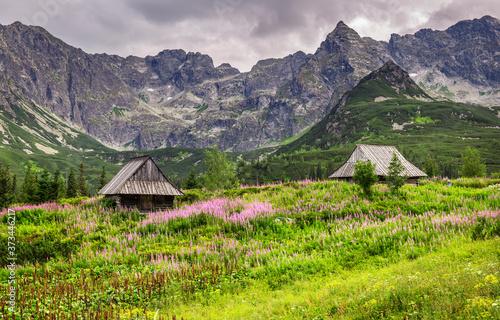 Alpine style landscape in the summer Billede på lærred