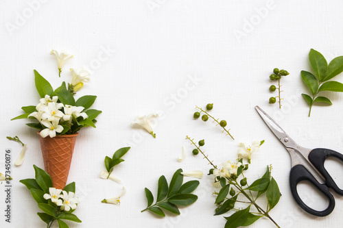 white flowers jasmine local flora of asia in cone and scissors arrangement flat Slika na platnu