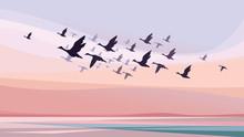Migratory Birds At Sunset. Wildlife Scenery.