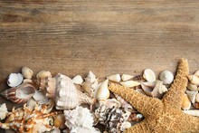 Sea Shells On Wooden Backgroun...