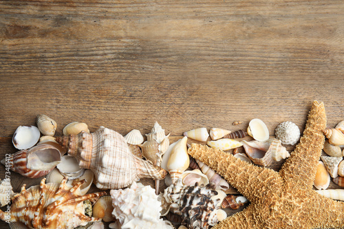 Photo Sea shells on wooden background, flat lay. Space for text
