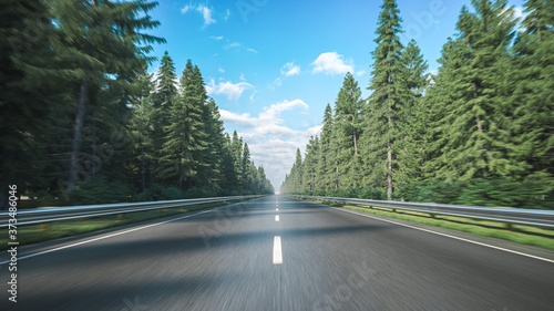 Road along the forest. Forest road Fototapeta