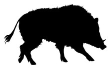 Silhouette Of Wild Boar Vector