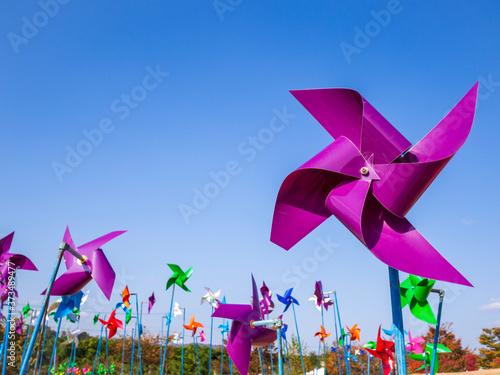 Fotografia, Obraz pinwheel in the wind