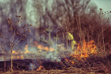 Firefighter Puts Out Grass / Forest Fire, Dry Grass Burns, Wind Blows