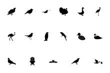 Birds Black Color Set Solid St...