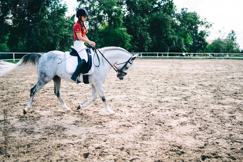 Young female horse rider on equestrian sport competition training hobby during r Fototapet
