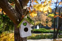 Decorative Birdhouse In Botani...