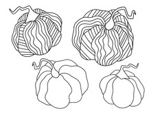 Four Pumpkins Setblack Outline Isolated On White Stock Vector Illustration. Black And White Illustration For Coloring Page For Kids And Adults. Decorative Ornamental Pumpkins Harvest Seasonal Day.