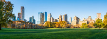 Panoramic View Of Central Park...