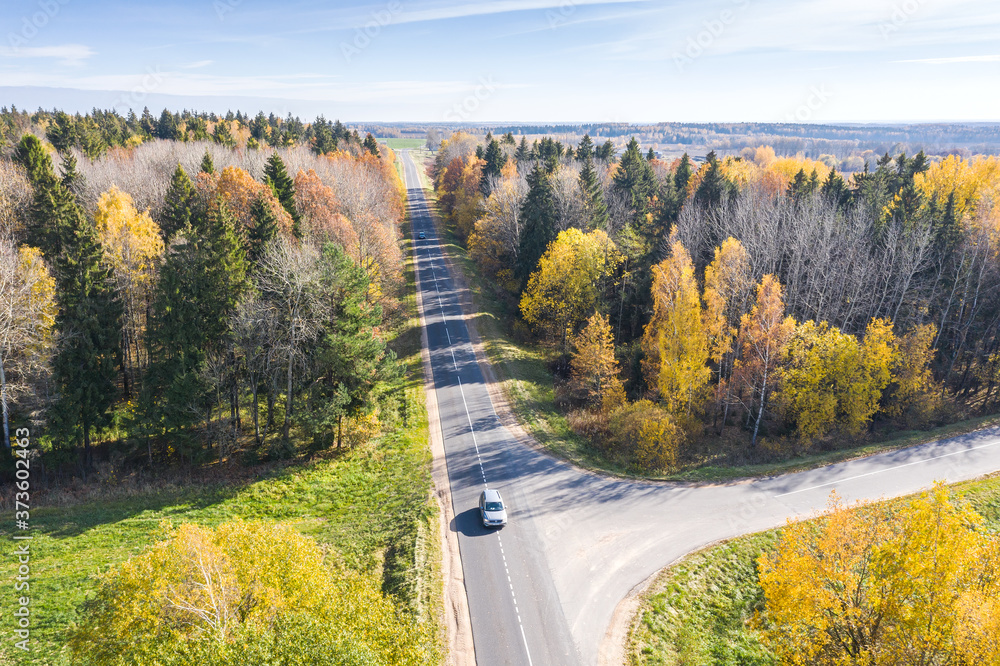 aerial view of country road with moving cars surrounded by colorful autumn trees