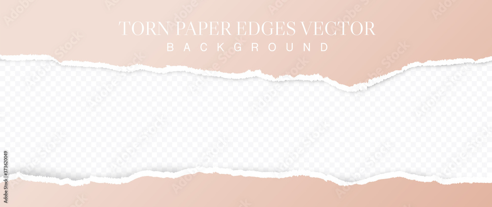 Fototapeta Torn pink paper with soft shadow stuck on grey squared background. Vector illustration