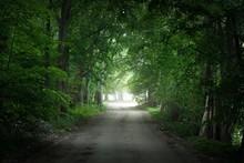 Dark Empty Mysterious Alley (s...