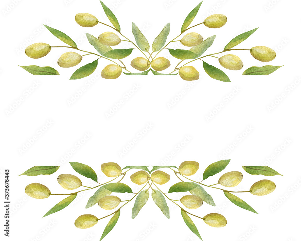 Fototapeta Watercolor hand painted nature garden plants banner frame with green olives and leaves on branch bouquet composition on the white background for invite and greeting card with the space for text