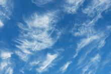 White Cirrus Clouds In A Blue ...