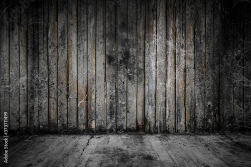 Old grunge wooden room and concrete floor covered with cobweb or spider web, con Canvas