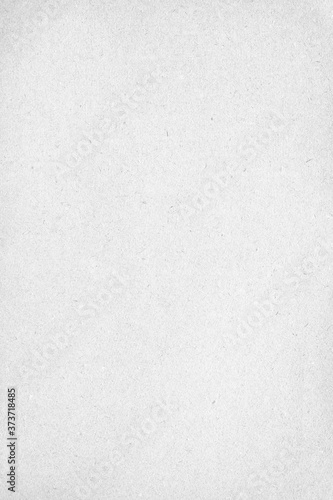 Vertical grey grain paper background texture Fototapet