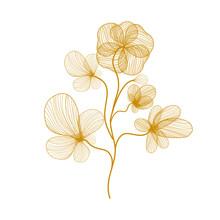 Golden Flower On White Background, Precious Autumn Time Concept