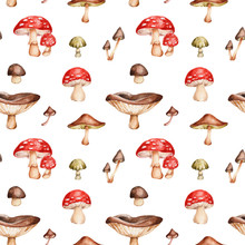 Seamless Pattern With Mushrooms; Watercolor Hand Draw Illustration; With White Isolated Background