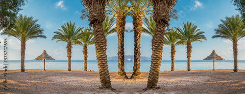 Fotografering Resting and recreational area with sunshades and palm trees at a sandy beach of