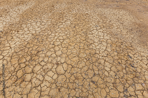 Brown dry soil or desert cracked ground texture background,land arid earth warming Canvas Print