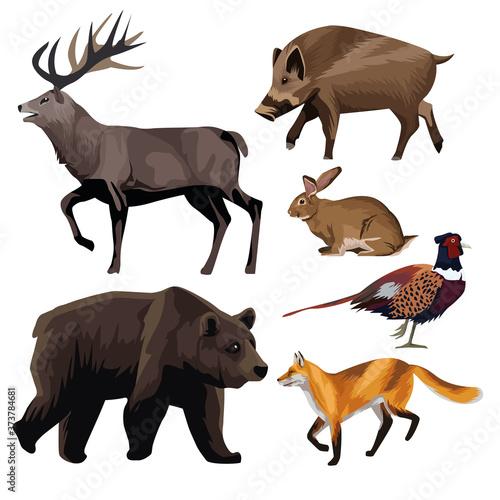 group of animals bundle set icons Fototapete