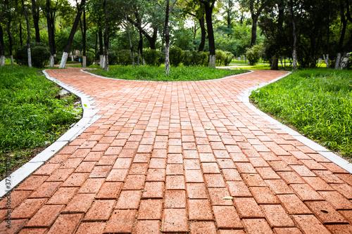 Fotografía Forked sidewalk in the park
