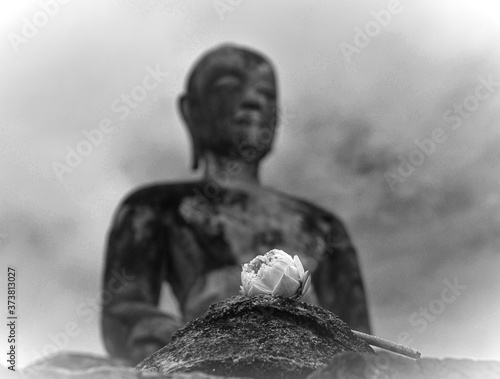 Fotomural Seated buddha and lotus flower