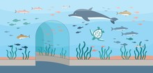 Oceanarium Or Aquarium Background With Fishes And Plants Vector Illustration.